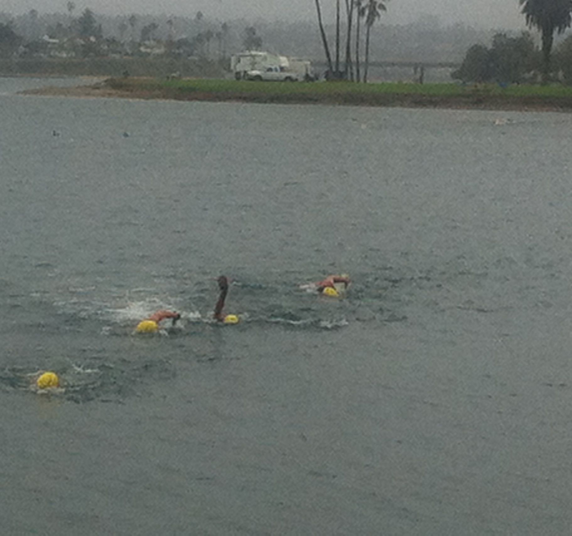Leading teams in the first swim
